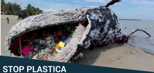 Plastic Free Challenge –  Un mare di plastica